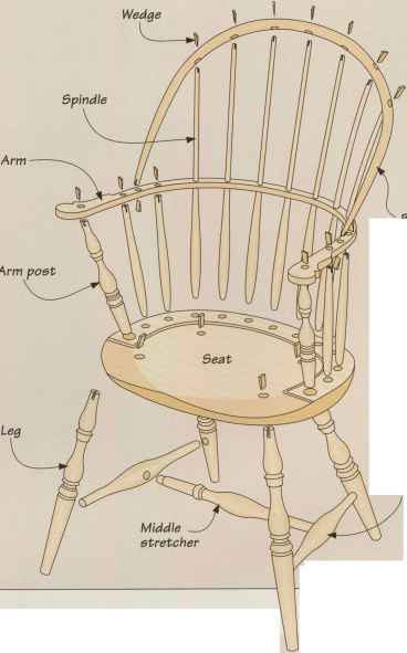 Anatomy Windsor Chair